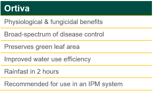 Ortiva Product Benefits